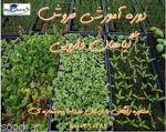 دوره آموزش مجازی شناسایی گیاهان دارویی