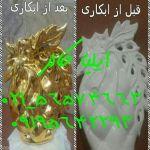 Fantachorome_iliacoler