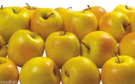 فروش پوره سیب با کیفیت صادراتی-pic1