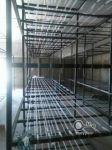 قفسه های سالن پرورش قارچ