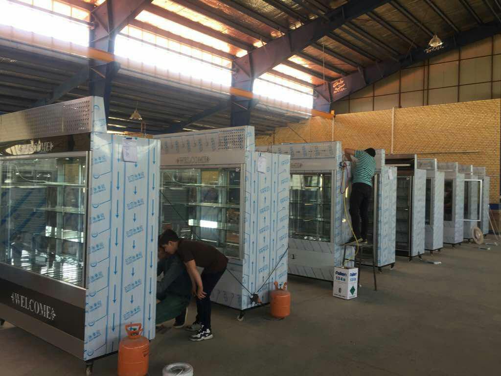 یخچال و فریزر مغازه-pic1
