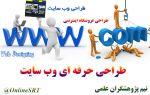 طراحی تخصصی و حرفه ای وب سایت