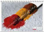 شرکت رنگچی شیمی