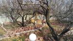 ویلای ۱۴۰۰متری و باغ اکازیون در شهریار