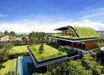 بام سبز(green roof)و دیوارسبز(green wal)