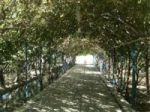 باغ ویلا به متراژ3200متر زیبا کد:202