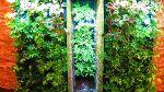 طراحی و اجرای دیوار سبز، تابلوی سبز و با
