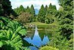 باغ و باغچه مورد پسند شما