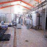 فروش استثنایی کارخانه تولید مواد لبنی با