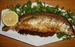 چلو ماهی قزل آلا و چلو گوشت
