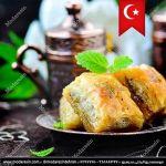 مدرسین -تدریس خصوصی زبان ترکی استانبولی