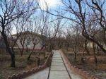 1000 متر باغ ویلا در شهریار کردزار