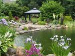 طراحی و اجرای فضای سبز و سیستم آبیاری