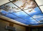تولید آسمان مجازی فرزیب با 2سال گارانتی