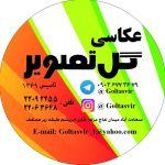 عکاسی گل تصویرمیدان کاج