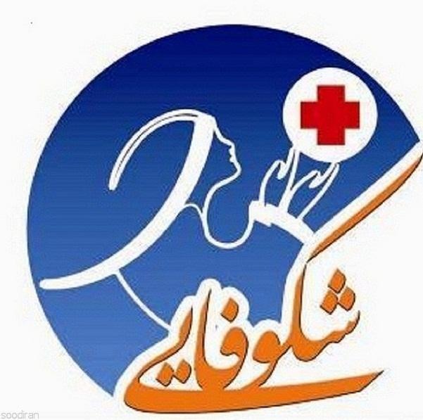 امور منزل و پرستاری و تنظیفات در شیراز-pic1