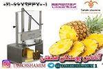 دستگاه آناناس