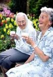 بهنا-کو مواظبت سالمندان
