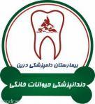 دندانپزشکی حیوانات خانگی دامپزشکی درین