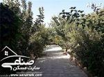 باغ سرسبز با سند 6دانگ در بکه کد 841