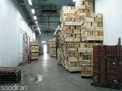 فروش سردخانه 5000 تنی در کرج-p1