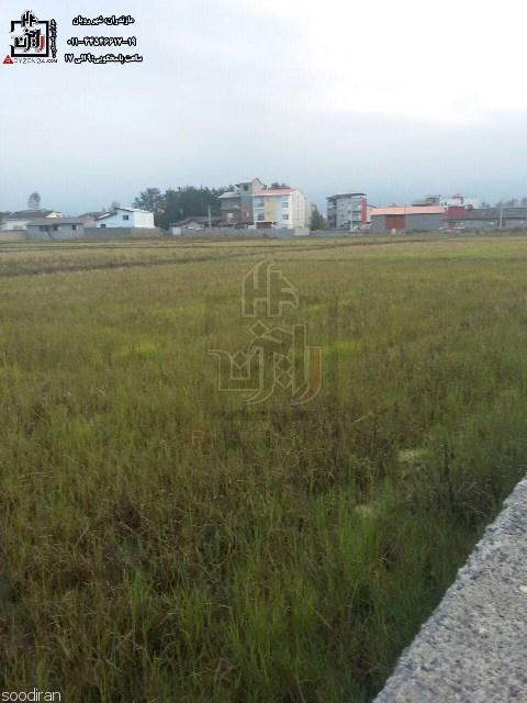 فروش زمین هکتاری /شهرنور-pic1